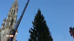 Pas possible de le manquer... Le sapin de Noël de la Grand-Place a été installé