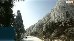 Des arbres couverts de neige et une mer de nuages créent un paysage enneigé féerique en Chine