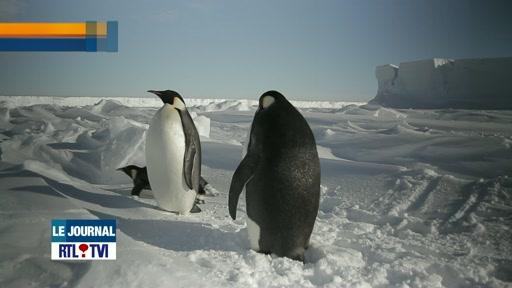 Images exceptionnelles de l'Antarctique dans la station scientifique belge Princesse Elisabeth.