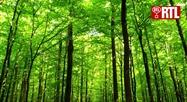 Pascal Martin, guide Nature - Elle est où la nature ?