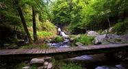 Le parc naturel régional Normandie-Maine - Le Petit Futé