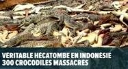 Indonésie: