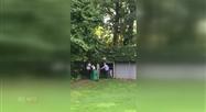 Un jeune héron perdu capturé dans un jardin à Embourg