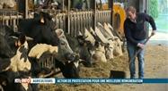 Les jeunes agriculteurs dénoncent des marges trop étroites