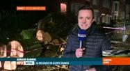 Tempête Ciara: un gros arbre est tombé en pleine rue à Uccle