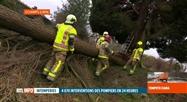 Tempête Ciara: débordés, les pompiers ont paré au plus urgent
