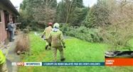 Tempêt Dennis: les pompiers de Sambreville sont très sollicités