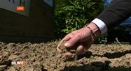 La sécheresse touche la Belgique