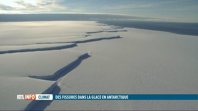 Nouvelle étude sur la disparition des masses de glace en Antarctique