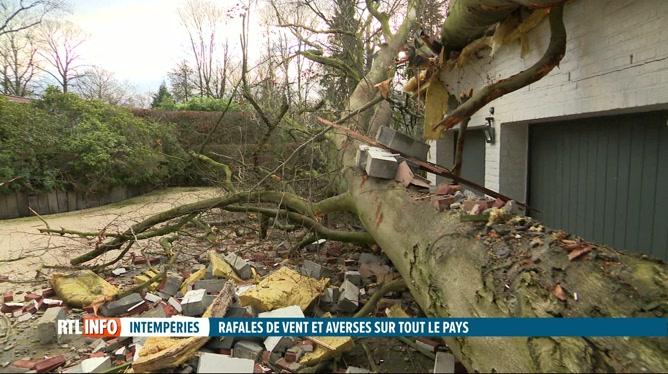 Le vent a fait d'importants dégâts en Wallonie et à Bruxelles la nuit dernière