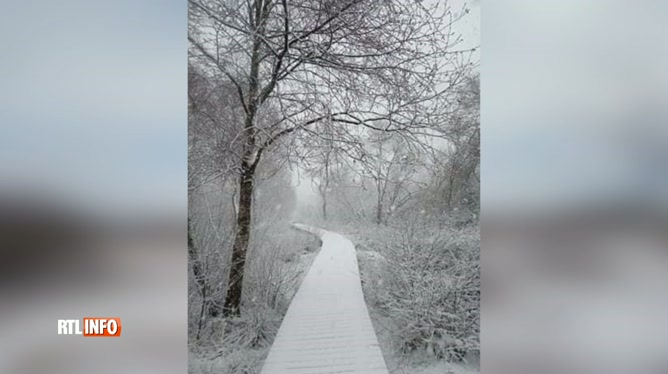 Il a neigé ce matin sur le plateau des Hautes Fagnes