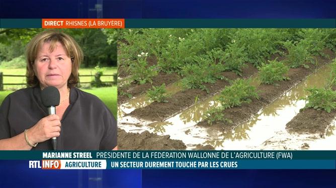 Inondations: Marianne Streel, FWA, évoque les dégâts subis par les agriculteurs